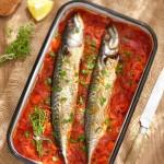 Скумрия плакия2 150x150 Fish and sea food