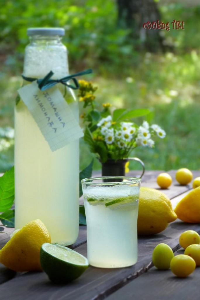 Домашна лимонада1 684x1024 Homemade lemonade