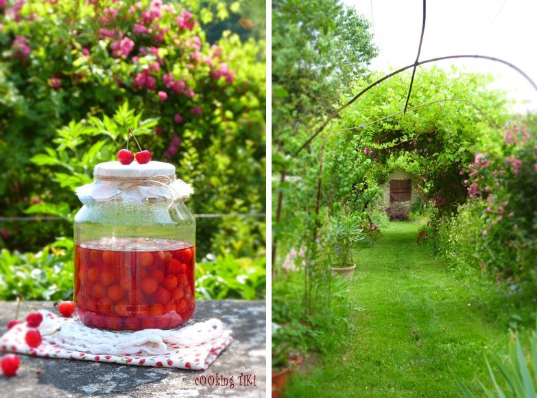 Вишновка 51 Sour cherry liqueur