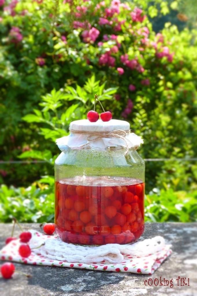 Вишновка1 681x1024 Sour cherry liqueur