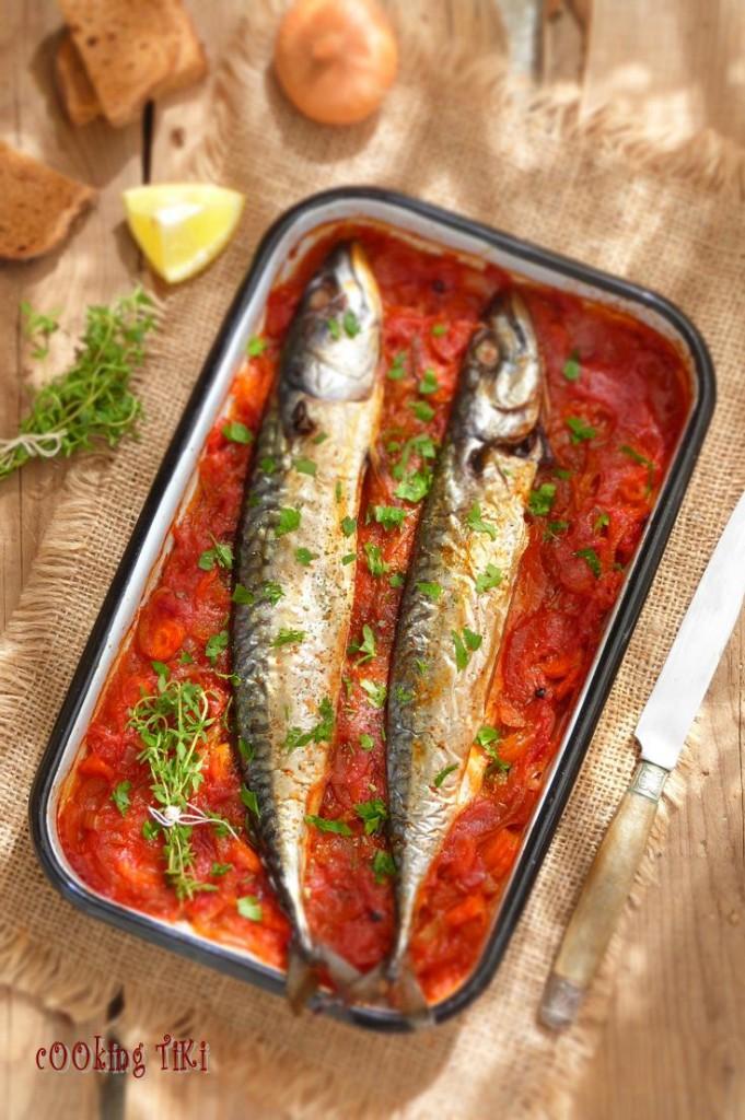 Скумрия плакия1 681x1024 Maquereaux à la sauce tomate